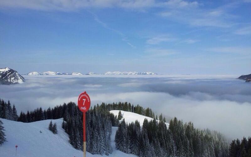Abfahrt Waldschneise Iseler | Haus Alpenblick in Oberjoch